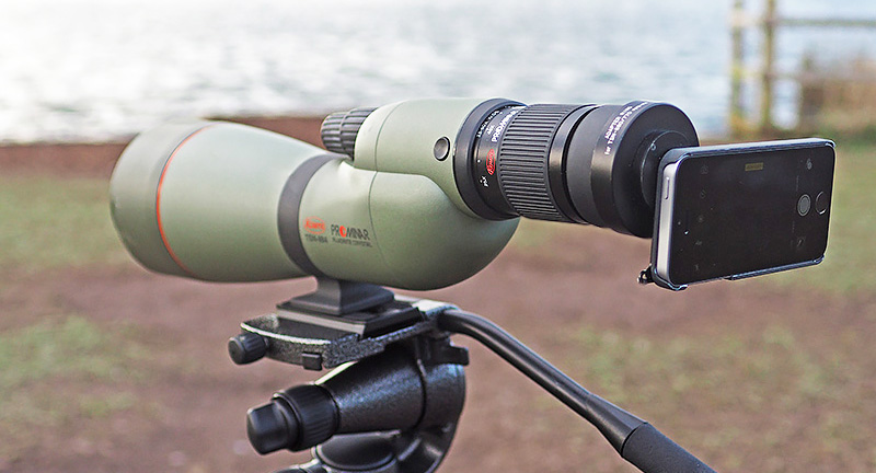 Spotting scopes for digiscoping