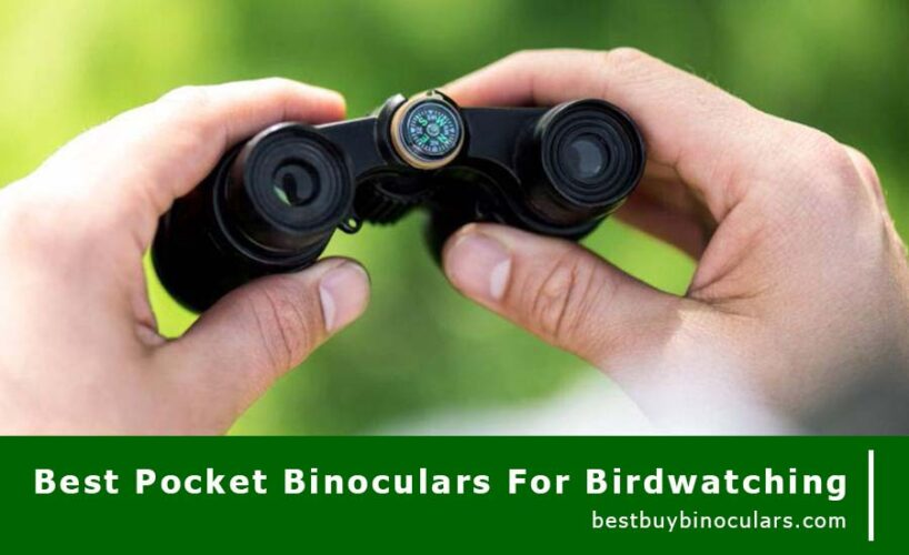 best pocket binoculars for birdwatching