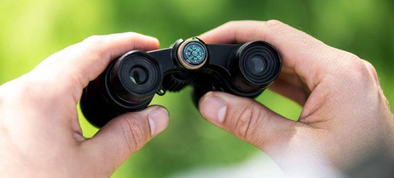 best pocket binoculars for birdwatching