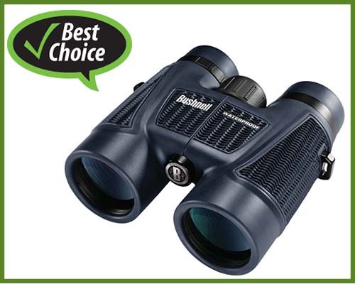 best-binocular-for-safari