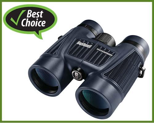best-binocular-for-safari