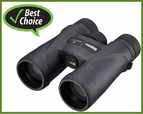 best-buy-binoculars-for birdwatching