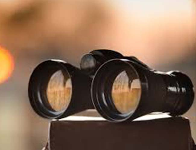best-small-binoculars
