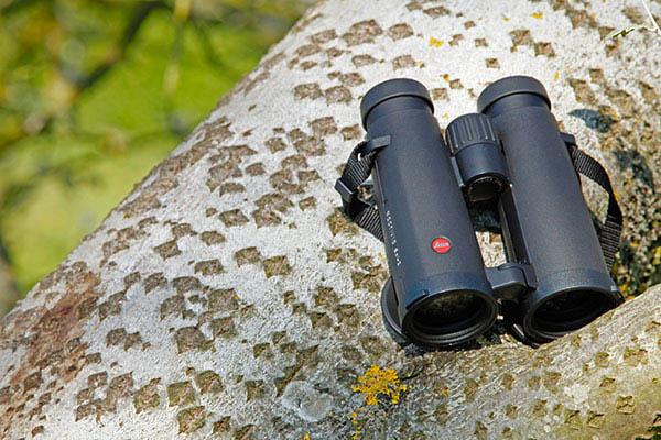 Leica Noctivid 10x42
