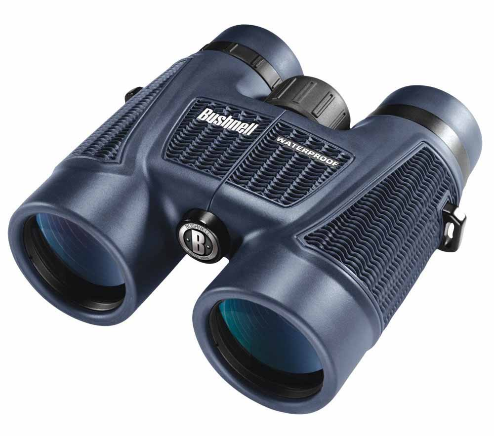 Best Binoculars Under $100 For Hunting