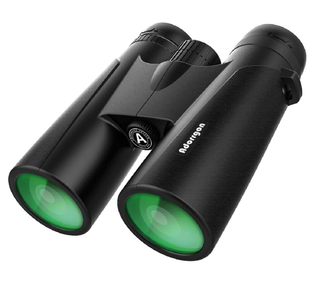Best binoculars under $50 for Sporting