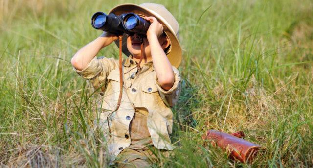 safari use