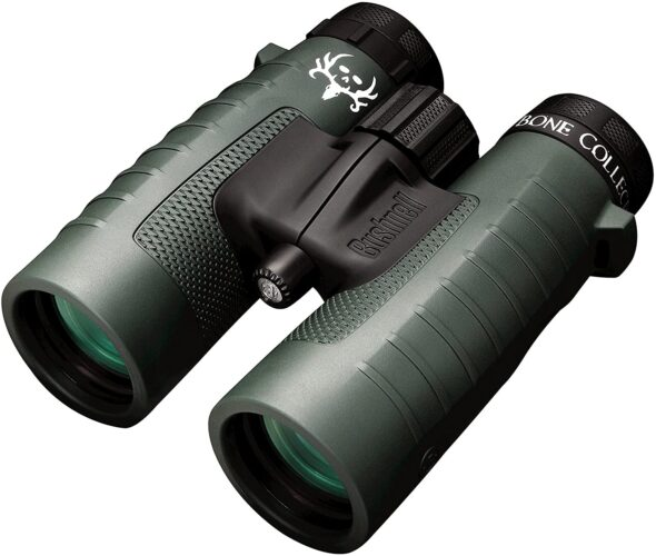 Bushnell Trophy XLT 10x42 review, analysis & recommendation