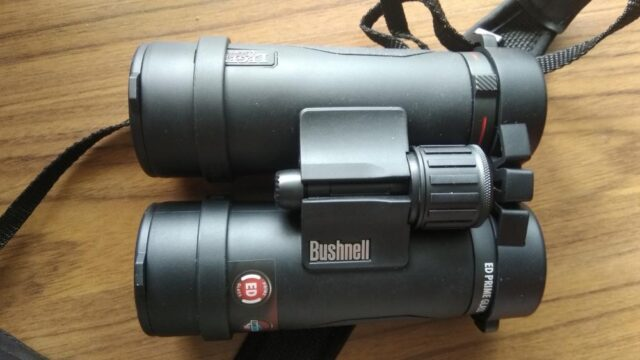 bushnell 10x42 legend l-series binoculars bestbuybinoculars.com