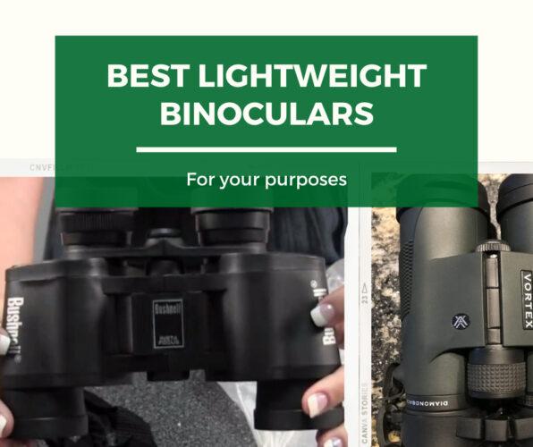 Top lightweight binoculars for various categories
